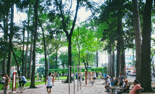 Tả khung cảnh buổi sáng trong công viên mà em đã được chứng kiến