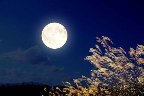 Tả lại một đêm trăng để lại cho em ấn tượng sâu sắc nhất